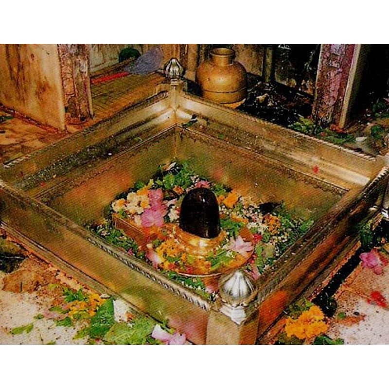 Kashi Vishwanath Temple Prasadam Varanasi Get Online From